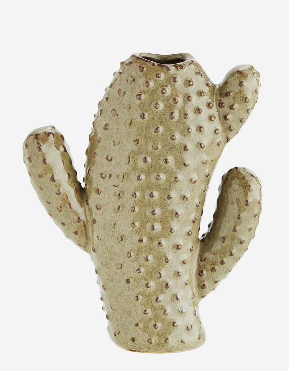 Vase cactus